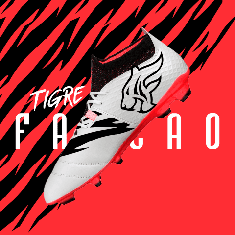 tigre falcao 2heart